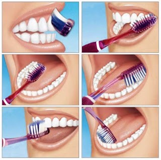 instructions how to brush your teeth step by step