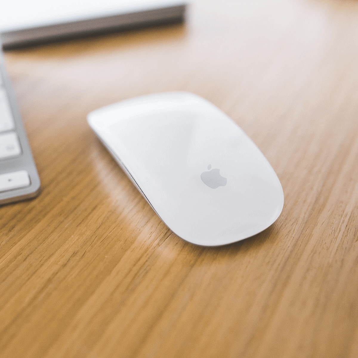 apple magic mouse instructions