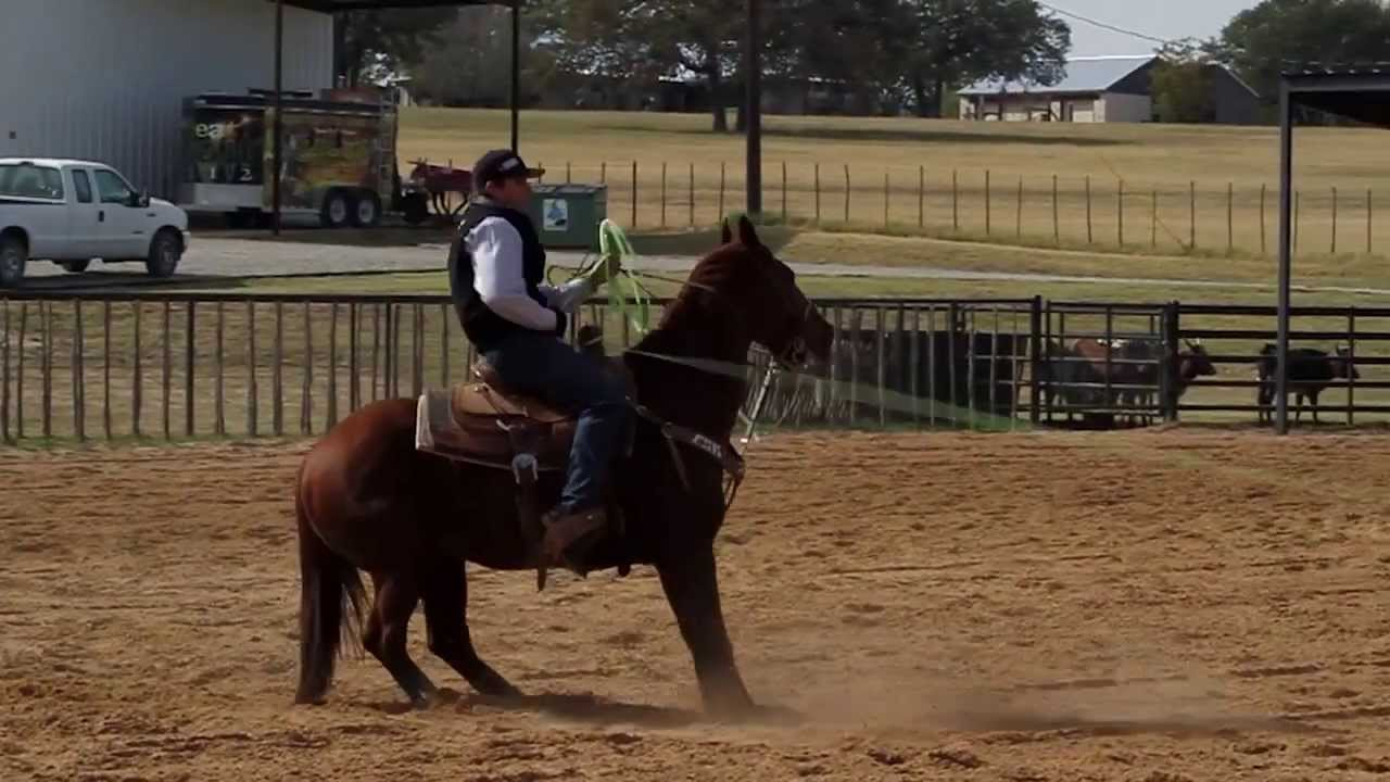 team roping instructional videos