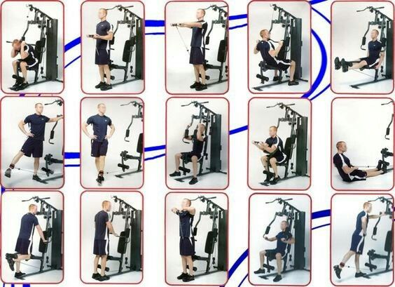 weider home gym instructions